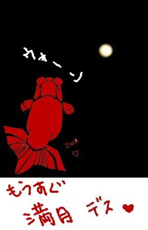 Manngetu_4