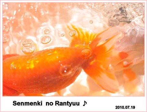 Senmenki_2